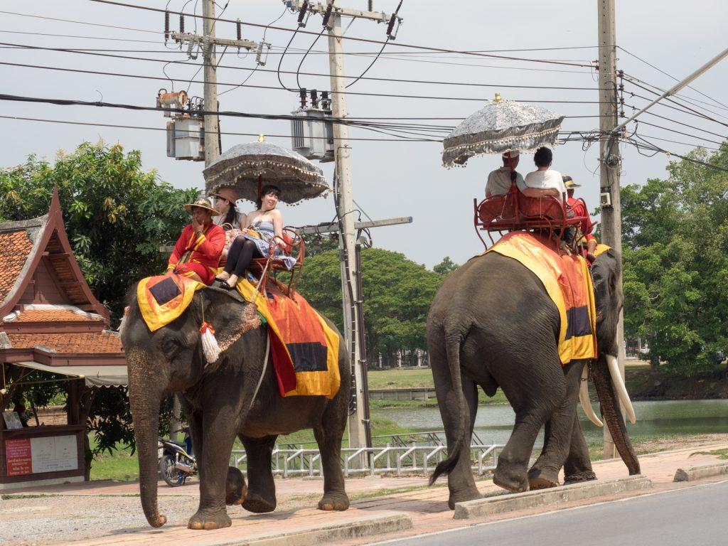 象に乗って観光は実にタイらしいイベントです